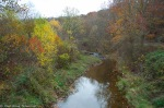 Fall in Lancaster, PA 7